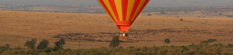 Balloon safari 2
