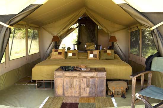 Kilima tent(mara)
